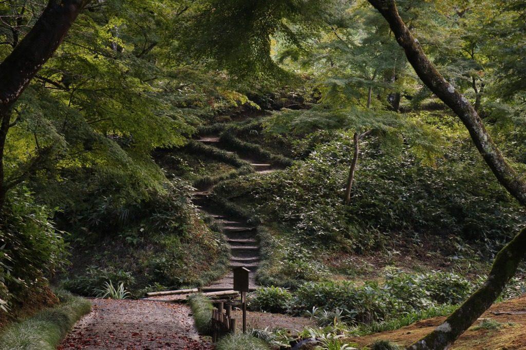 茨城県、西山荘の山の頂上へ向かう階段