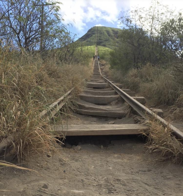 ハワイ、ココヘッドトレイルの枕木の階段