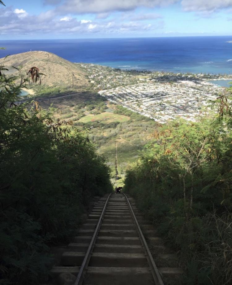 ハワイ、ココヘッドトレイルの階段上からの景色