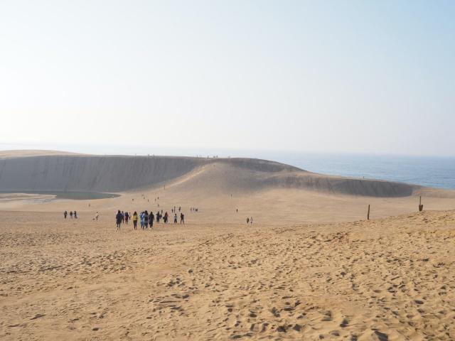 鳥取県、鳥取砂丘の砂山