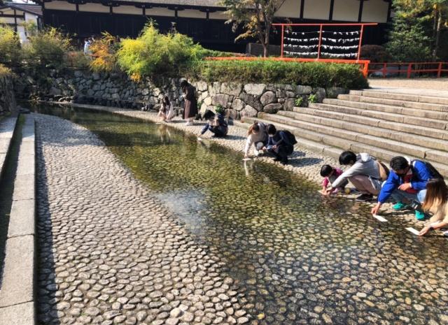 京都府、下鴨神社の御手洗川