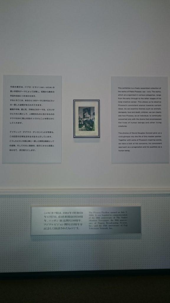 神奈川県、箱根彫刻の森美術館の外観