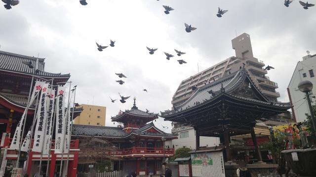 愛知県、大須観音~大須商店街周辺ののぼり