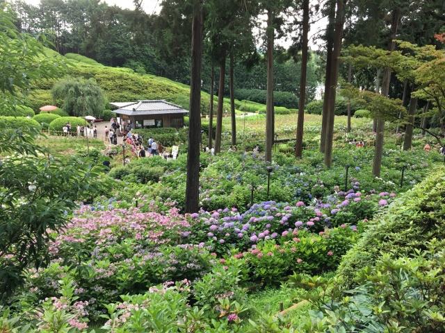 京都府、三室戸寺の外観